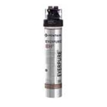 Pentair® Everpure QL3-BH2 Filtration System - 9272-00