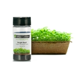 Urban Cultivator® Indoor Basil Seeds, 17g - SD-BAS