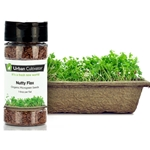 Urban Cultivator® Nutty Flax Seeds, 84g - SD-FLA